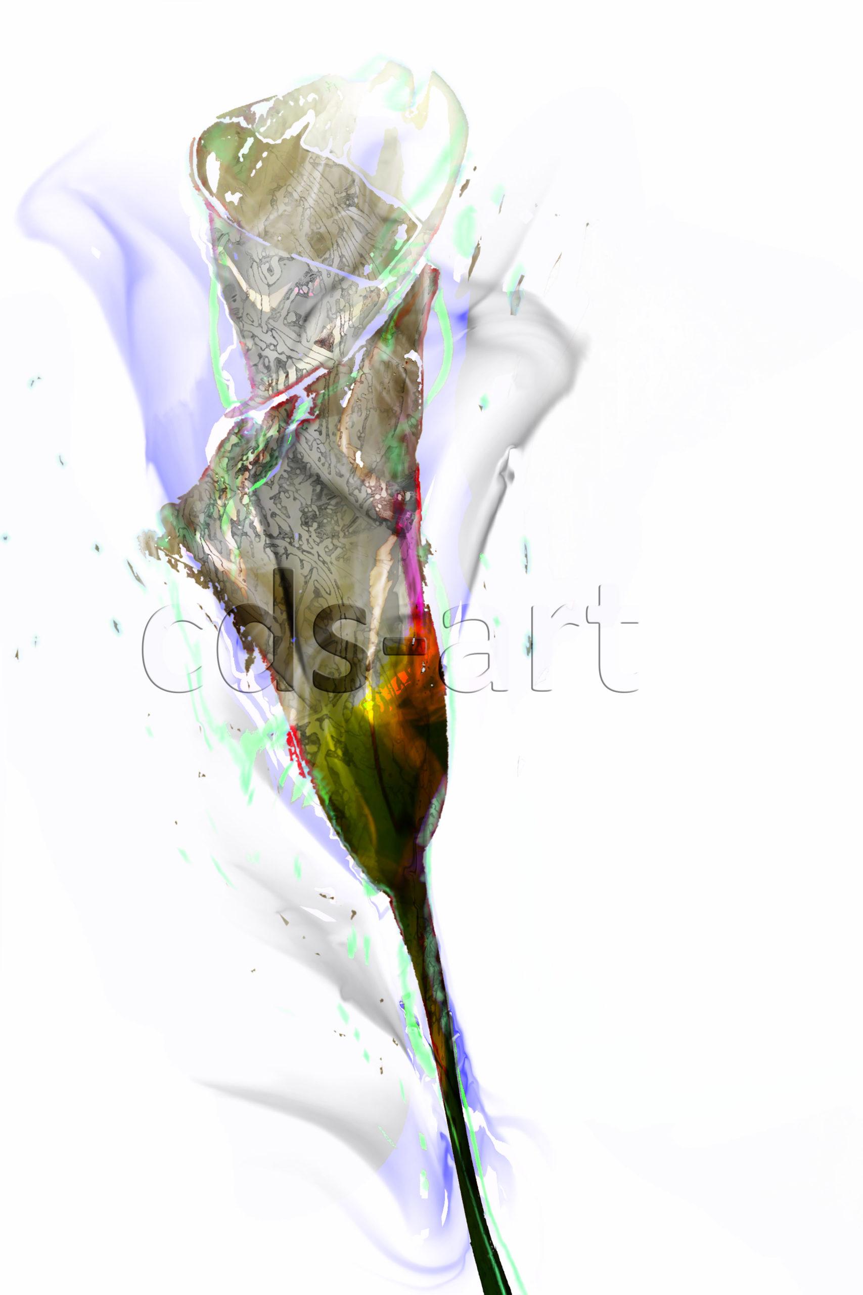 flower cala 2